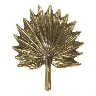 Gold doorknob palm