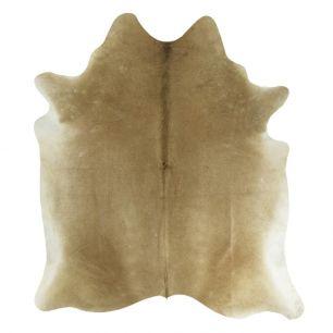Carpet cow beige (bos taurus taurus)