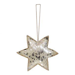 Hanging decoration silver star large 20cm (bos taurus taurus)