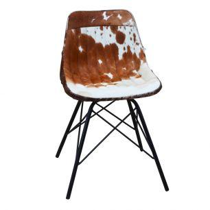 Chair cow brown white x (self assembly) (bos taurus taurus)