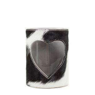 Lantern cow heart black/white 15cm (bos taurus taurus)