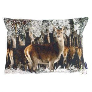 Big cushion velvet flock deer 40x60cm