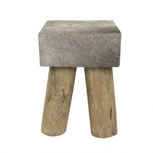 Stool cow grey square (bos taurus taurus)