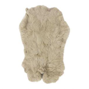 Fur rabbit beige (oryctolagus cuniculus)