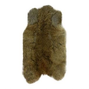 Fur rabbit brown (oryctolagus cuniculus)