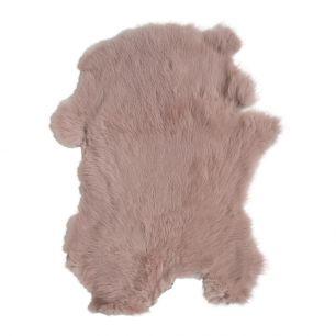 Fur rabbit pink (oryctolagus cuniculus)
