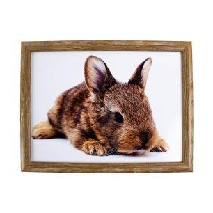 Laptray lying rabbit