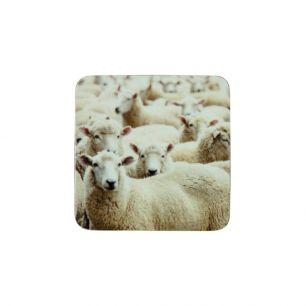 Coaster sheep (6)